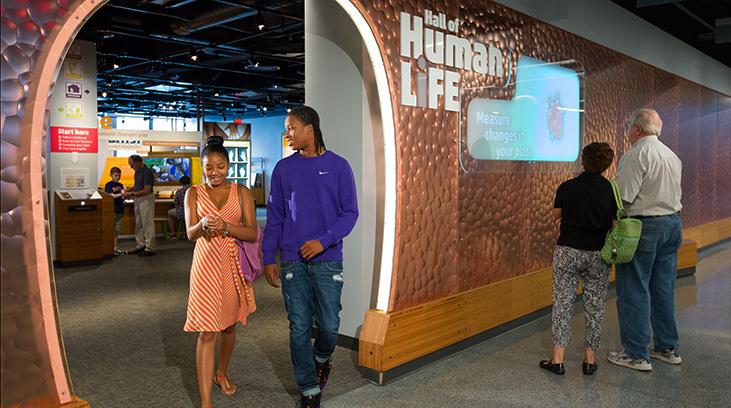 exhibits_hall-of-human-life_entrance