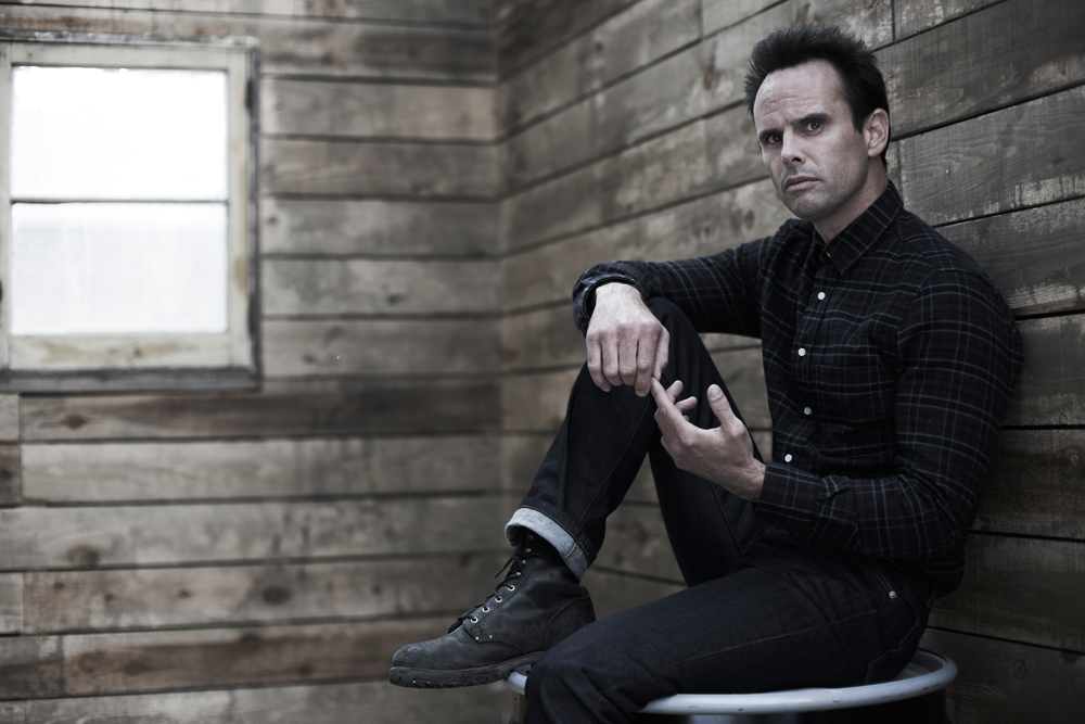 walton goggins six