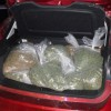 boston weed bust