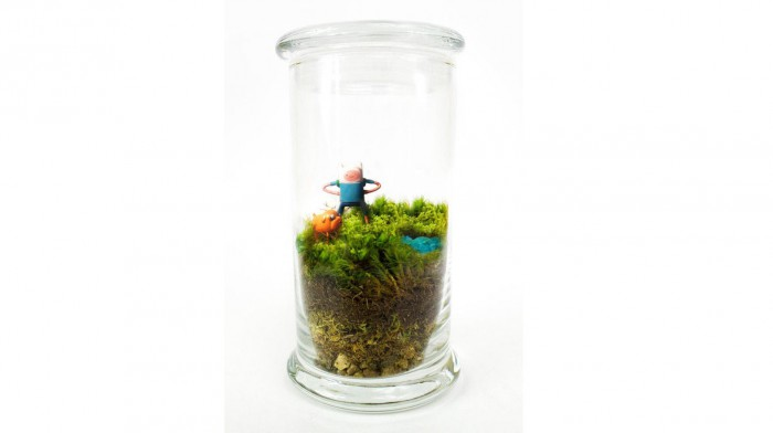 Adventure Time Terrarium