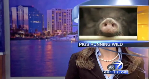 news bloopers 2014