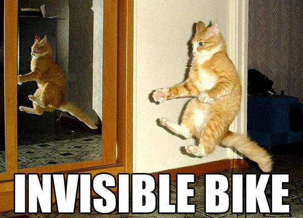 cat-invisible-bike