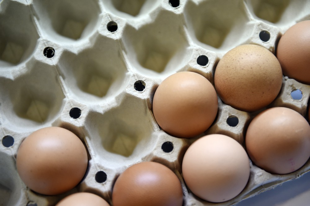 FRANCE-ECONOMY-AGRICULTURE-EGG