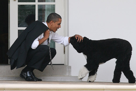 President Barack Obama crouches to greet his dog, Bo, outside the Oval Office of the White House, in Washington, DC, 3-15-12.