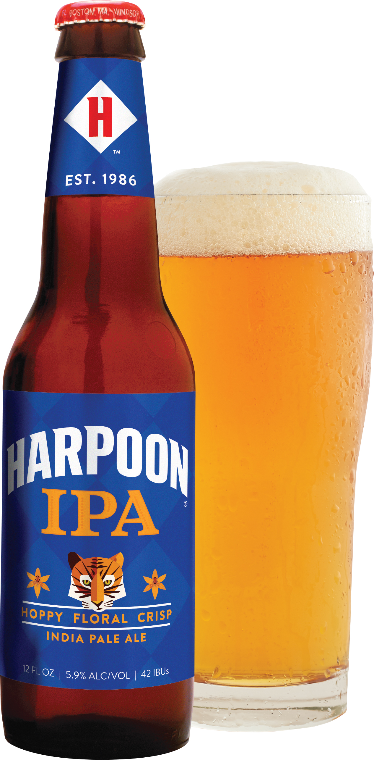 NEW-Harpoon-IPA-12oz-Bottle-And-Glass