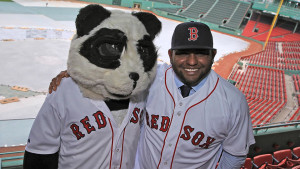 (Boston , MA, 11/25/14) Newly acquired Red Sox Pablo Sandova poses with a Panda Bear after a press conference to announce the third baseman to Fenway Park on Tuesday,  November  25, 2014.  Staff Photo by Matt Stone