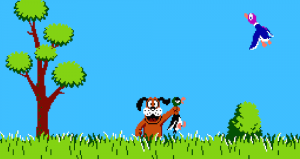 duck hunt header