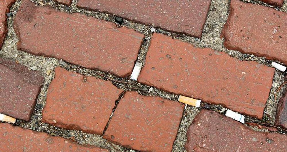 greenhouse_27smoking-7_healthsciene