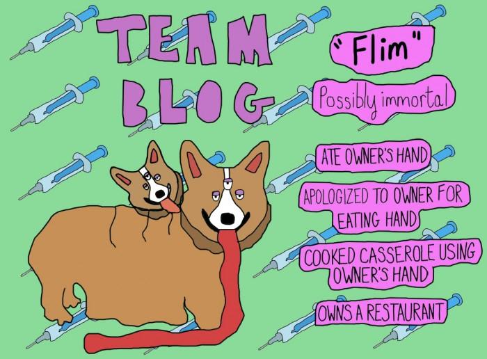 teamdog1