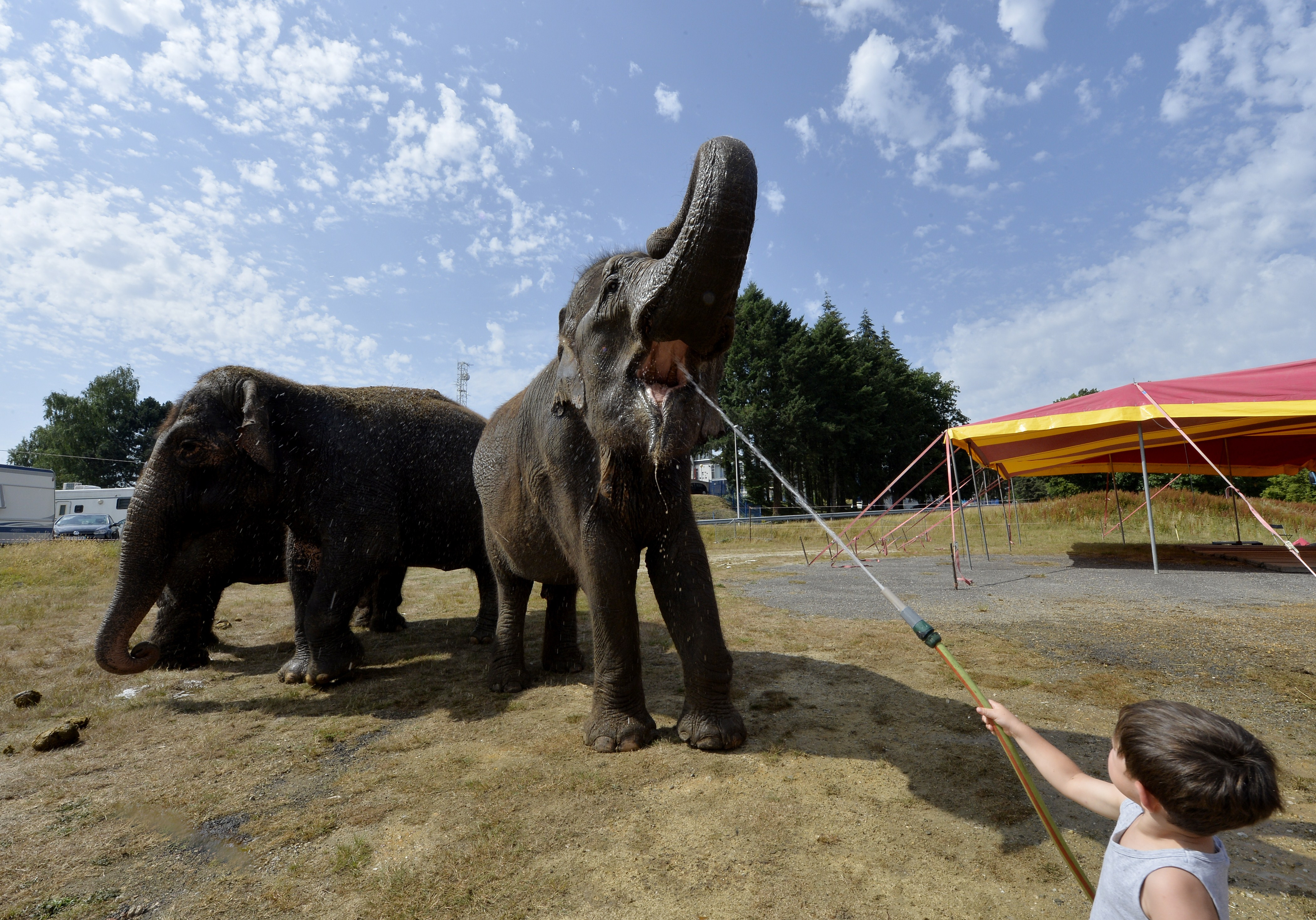 FRANCE-WEATHER-CLIMATE-HEATWAVE-CIRCUS